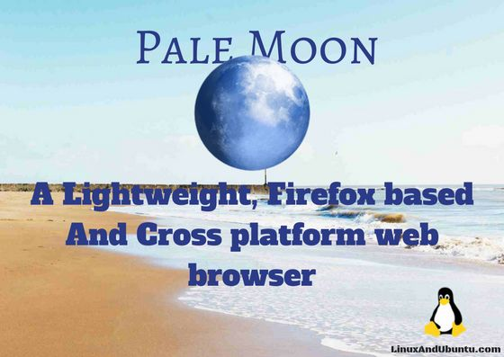 Pale Moon a firefox based web browser