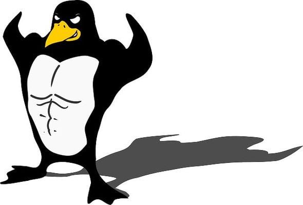 linux penguin powerful