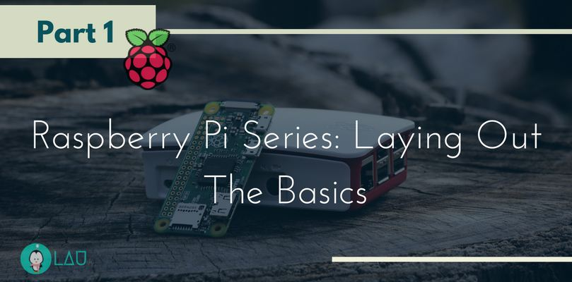 Raspberry Pi Series Part 1 Laying Out The Basics